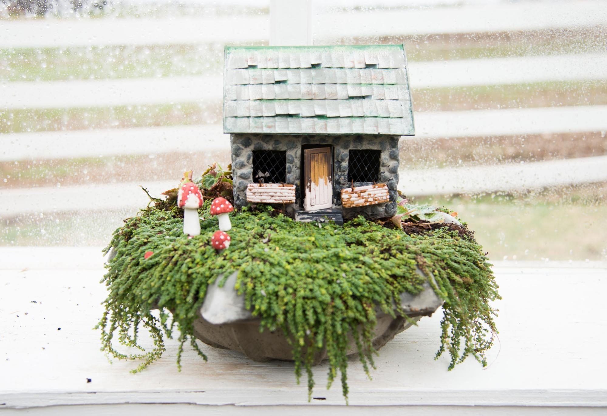 Diy Fairy Gardens At Home A Blog By Joanna Gaines