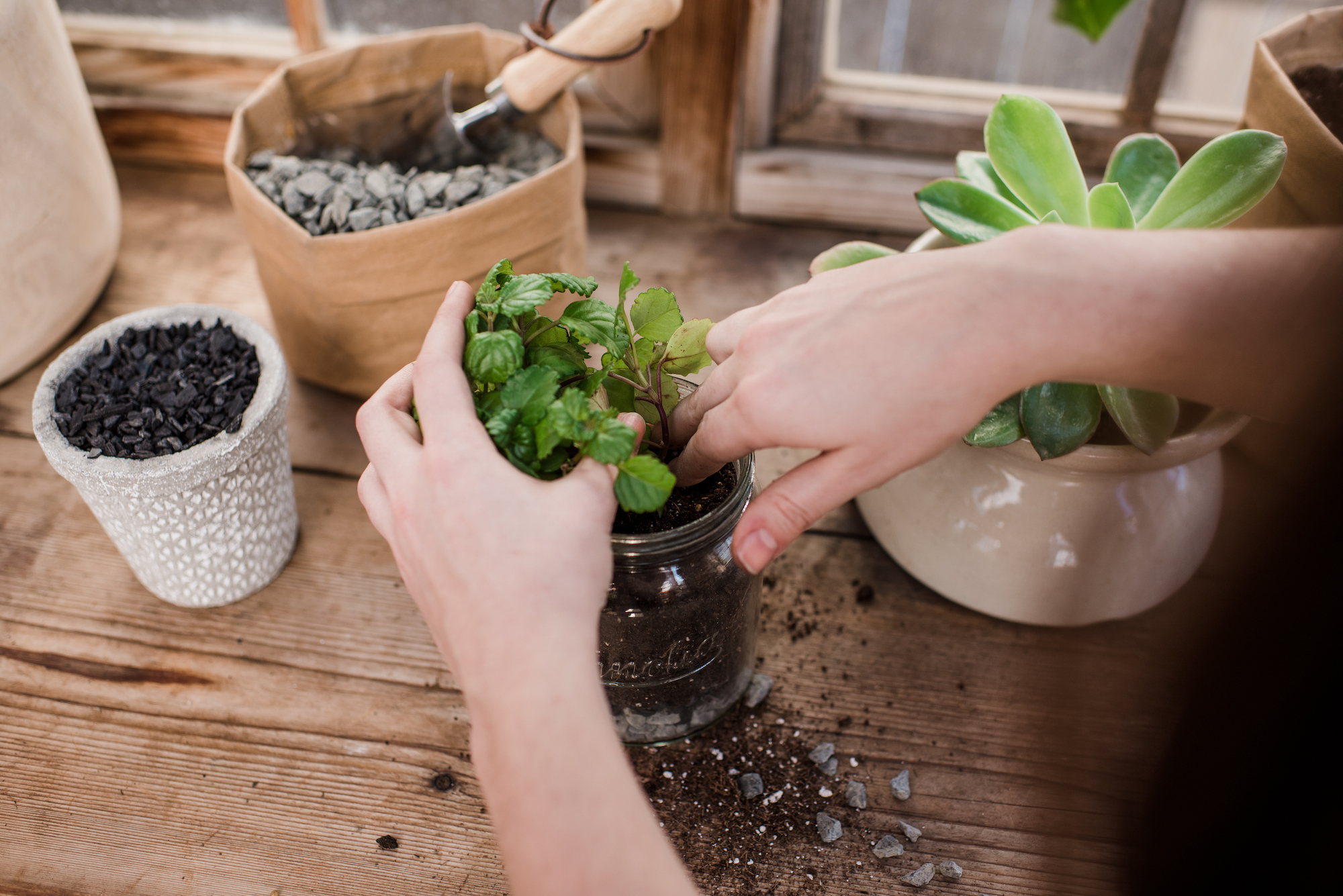 Image result for drainage for potted plants